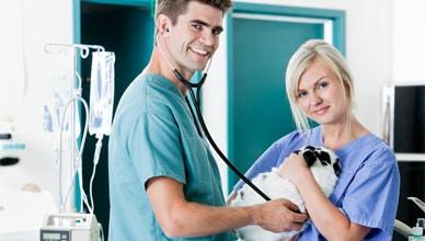 veterinary_tech_do